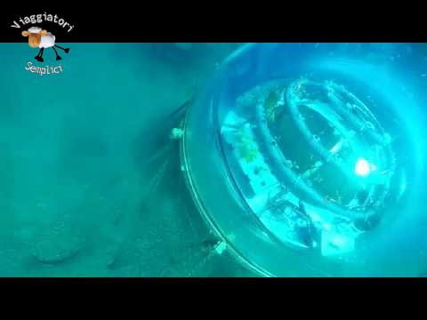Basilico subacqueo